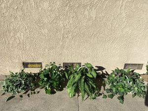 6 Fake Plastic House Plants Home Decor for Sale in Corona, CA
