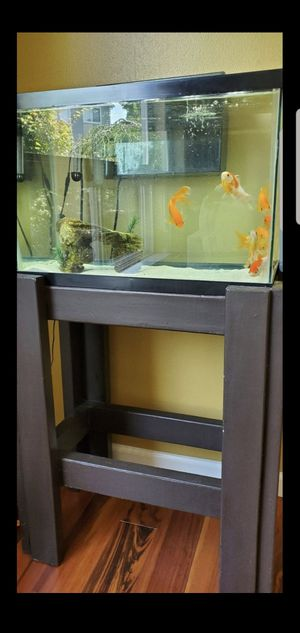 20 Gallon Aquarium with stand for Sale in Puyallup, WA