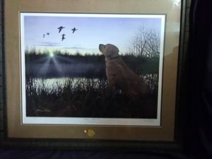Picture with frame for Sale in Chesapeake, VA