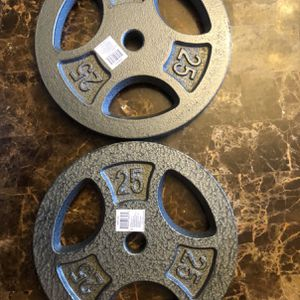 Two 25 lbs Weight Plates for Sale in Bethesda, MD