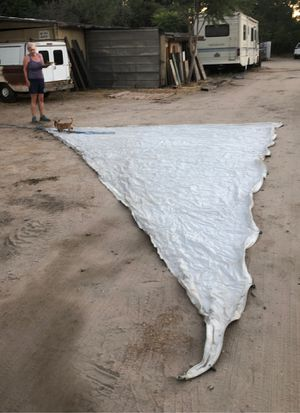 Sailboat sail - white for Sale in San Bernardino, CA