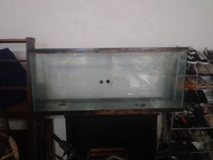 50 gallon fish tank for Sale in Cleveland, OH