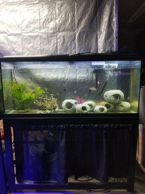 60 gallon fish tank for Sale in Lakewood, WA