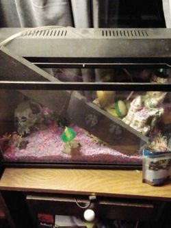 Fish Tank And Accessories for Sale in Antioch,  CA