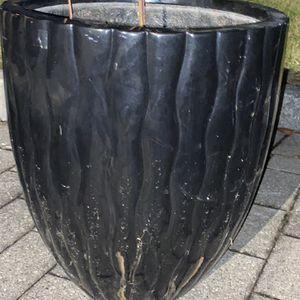 Huge Black Flower Vase for Sale in Syosset, NY