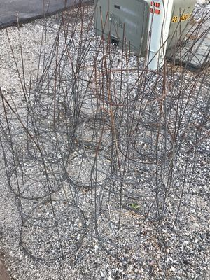 Free tomato cages. for Sale in Chelan, WA