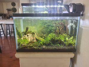10 gallon fish tank for Sale in Huntington Beach, CA