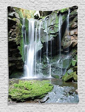 Waterfall Decor Collection, Rocky Waterfall Pond Runoff Scenic Nature Picture, Bedroom Living Kids Girls Boys Room Dorm Accessories Wall Hanging Tape for Sale in Durham, NC