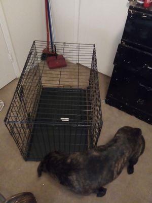 Kennel for Sale in Longview, TX