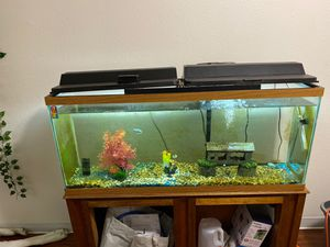 75 gallon fish tank with stand for Sale in Joint Base Lewis-McChord, WA