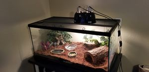 "50 Gal Reptile Tank and Supplies 36""x18""x18"" for Sale in Avondale, AZ"