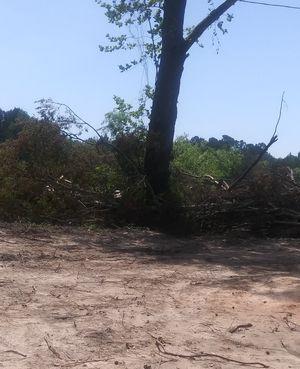 Pine/Oak wood for Sale in Carthage, TX