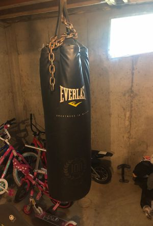 Punching bag and gloves for Sale in St. Louis, MO