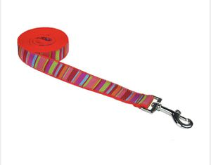 Coral Pet Leash 4ft (small) for Sale in Worcester, MA