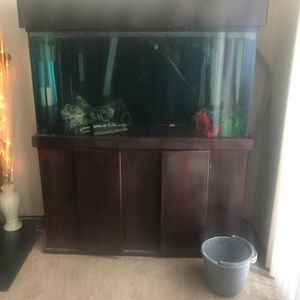 75 Gallon Fish Tank 2 Large Filter And Air Pump for Sale in Bellflower, CA