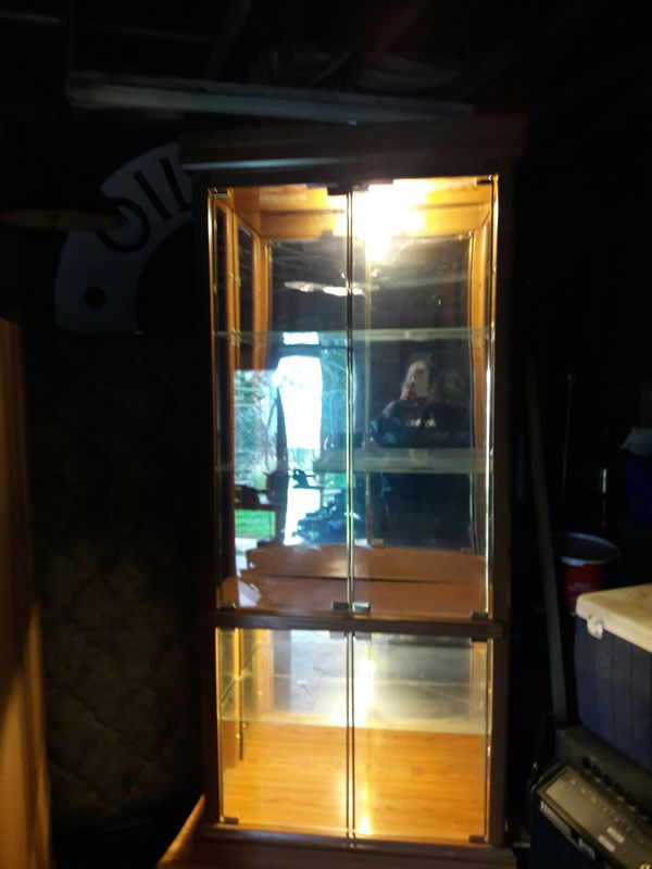 Lighted glass/wood cabinet