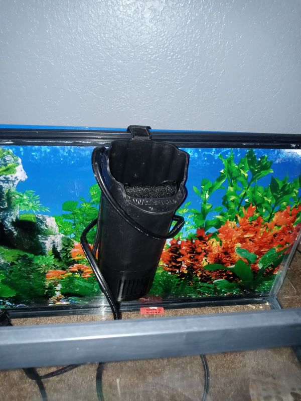 10 gallon fish tank with light
