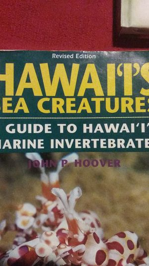 Book - Hawaii Sea Creatures for Sale in Kapolei, HI