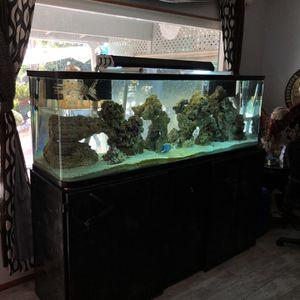 180 Gallon Aquarium Tank for Sale in Bell Gardens, CA