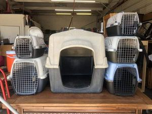 Cat and Dog Crates Cages Carriers different Sizes for Sale in Alexandria, VA