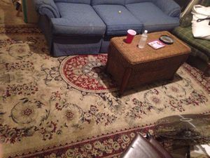 10 but I hate Persian rug originally $700 has 10 by 8 has some stains but with a little steam clean will be great for a wholecleaning is a beautiful for Sale in Tampa, FL