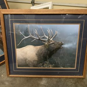 Large Elk Picture In Oak Frame for Sale in Puyallup, WA