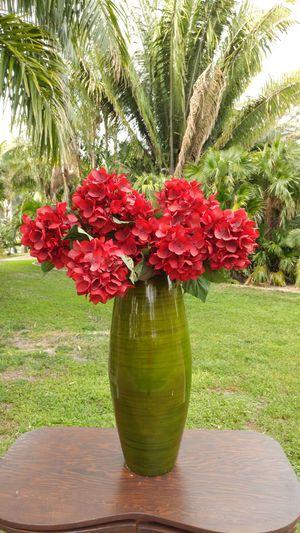 Vase for Sale in Saint Petersburg, FL
