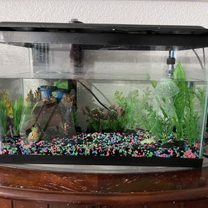 20 Gallon Fish Tank With Supplies for Sale in Moreno Valley, CA