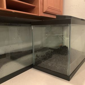 Two Tanks! 20 Gal For Reptile & 10 Gal For Fish for Sale in Lake Mary, FL