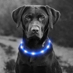 LED Rechargeable Light Up Dog Collar for Sale in Paramount, CA