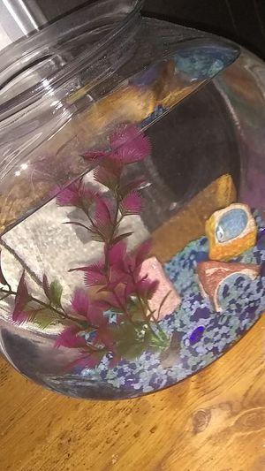 Fish tank 15$ for Sale in Port Lavaca, TX