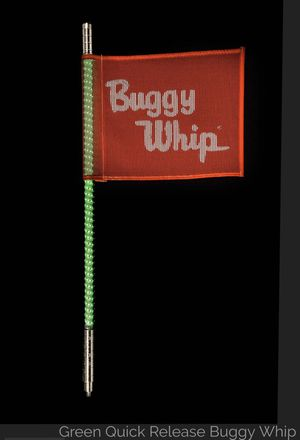 Buggy Whip for Sale in Norco, CA