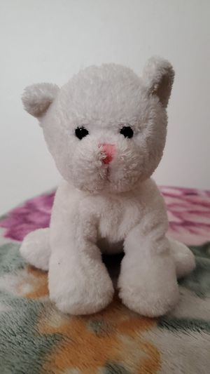Polar bear stuffed animal for Sale in San Diego, CA