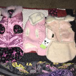 Brand new puppy clothes jackets outfits and bed time for Sale in Waco,  TX