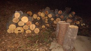 Free Burning Wood for Sale in High Point, NC