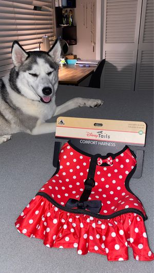 Disney Tails Dog Harness for Sale in Riverview, FL