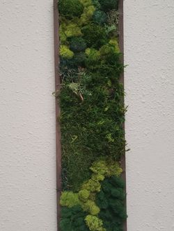Moss Wall Art 7x29 Custom Made To Order for Sale in Hayward,  CA