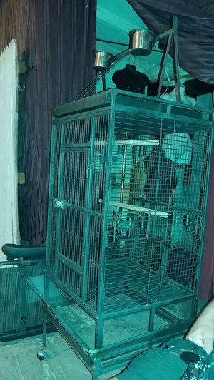 Bird cage for Sale in El Mirage, AZ
