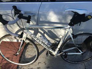 Cannondale Synapse Road Bike Size 56 for Sale in Miami, FL