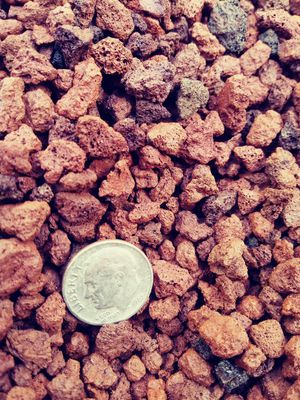 Porous 100% natural crushed 3/8 lava rock is ideal for soil drainage while maintaining moisture to allow your succulents, cactus bonsai trees. 10lbs for Sale in Las Vegas, NV