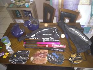 Baseball gloves and bat with bags for Sale in Orlando, FL