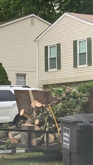 Free Firewood for Sale in Manassas, VA
