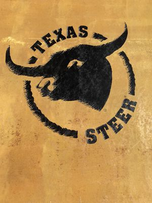 Texas Steer Work Boots - Brand New - Make Offer for Sale in Las Vegas, NV