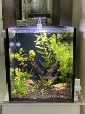 Fish tank aquarium for Sale in Holiday, FL