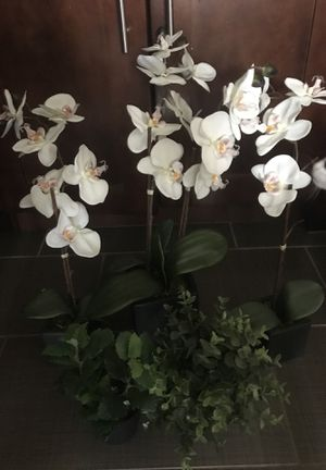 Fake plants for Sale in Bowie, MD
