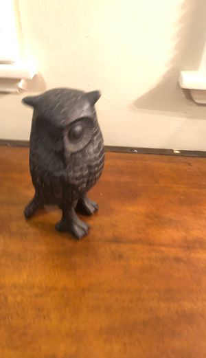 Black owl for Sale in Long Beach, CA