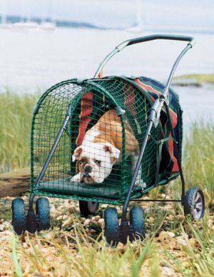 Dog stroller for Sale in Zephyrhills, FL
