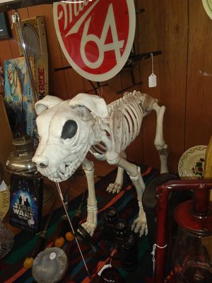 Plastic dog skeleton for Sale in Chico, CA