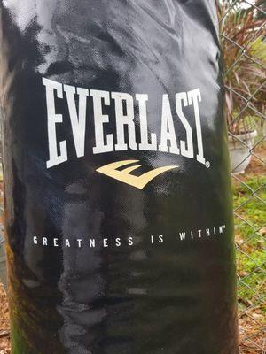 Punching Bag. Heavy EXERLAST $30 for Sale in Raceland, LA