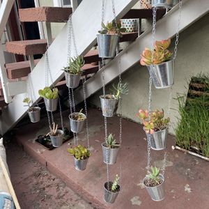 14 x Hanging Tin Pots With Different Succulents for Sale in Los Angeles, CA